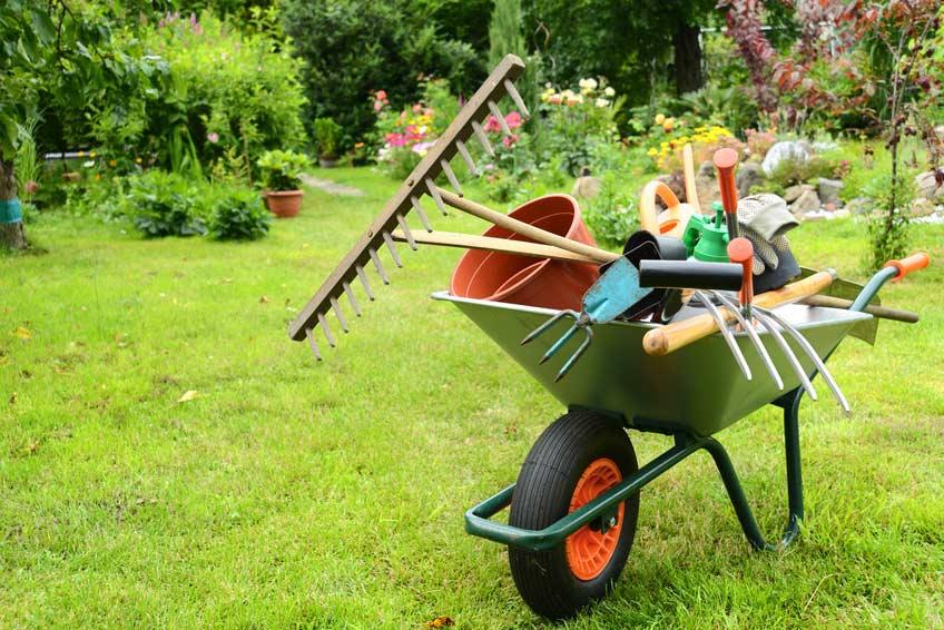 Garten- und Landschaftsbau bei Volberg